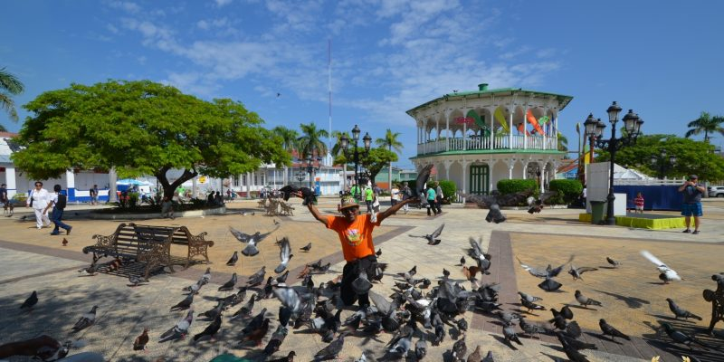 A local rejoices in the main plaza surrounded by pigeons