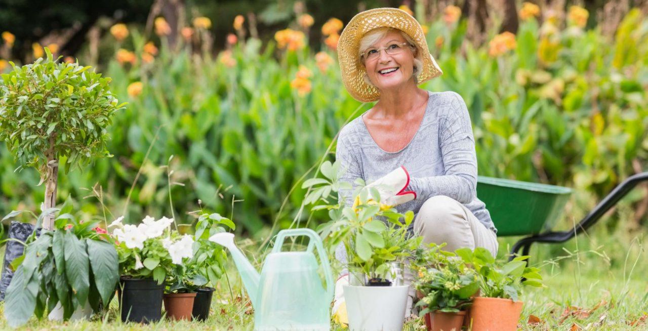 senior-gardening-1280x654.jpg
